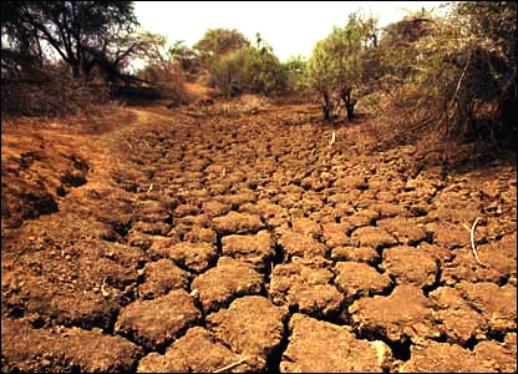 فرسایش خاک در ایران چهار برابر متوسط جهانی