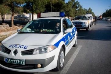 """پلیس تهران: شیشۀ دودی، """"دور دور کردن"""" و سگ گردانی جرم است"""
