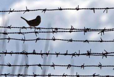 محرومیت پنج ماه شکوفه آذر از ملاقات با خانواده و وکیل مدافع خود