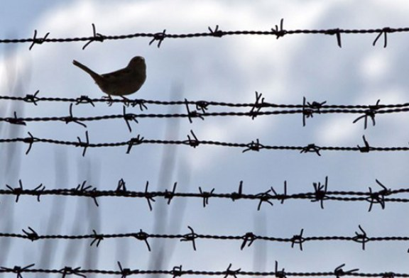 همه زندانیان دوملیتی در ایران هنوز آزاد نشدهاند
