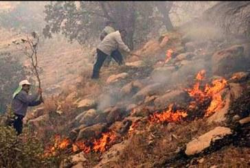 جنگلهای مازندران ۶ روز است که در آتش می سوزد