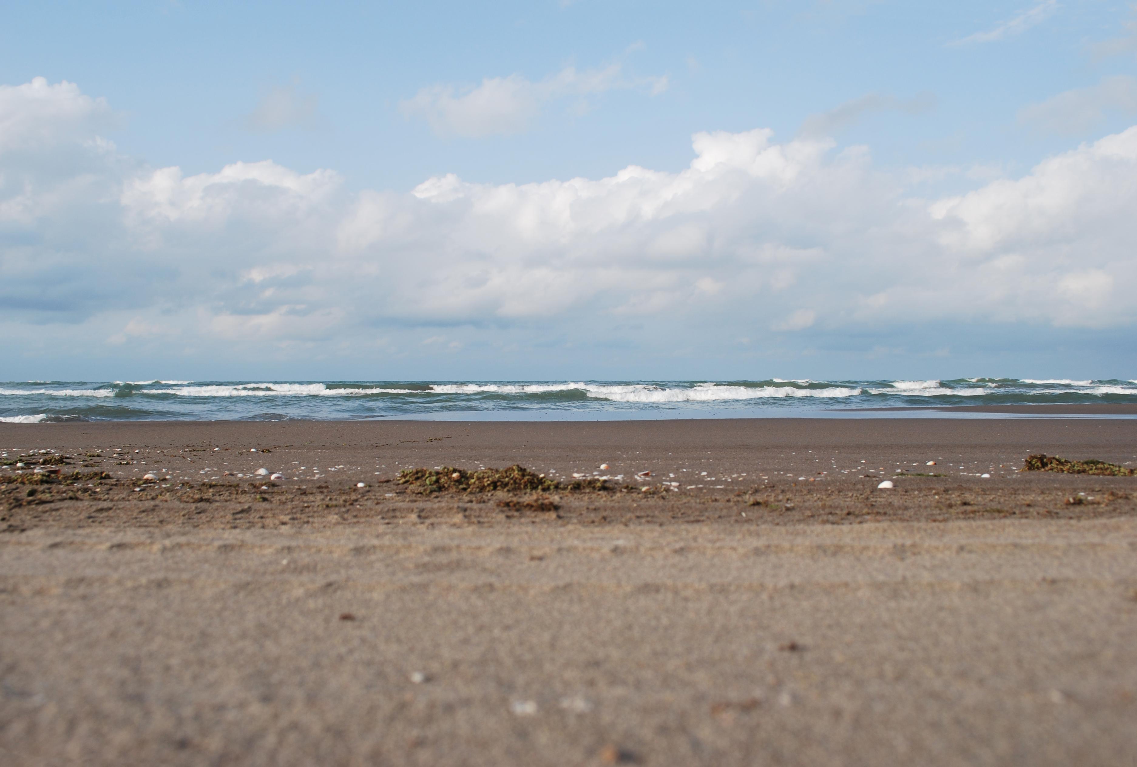 گزارش وضعیت اسفناک زیستمحیطی دریای خزر در دنیا