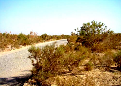 تبدیل ۴۰ هزار هکتار از زمینهای خوزستان به بیابان