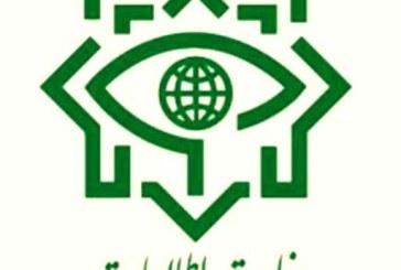 یکی از مدیران یک شبکه ماهوارهای فارسی زبان در ایران بازداشت شد