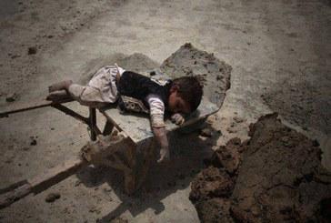 واکنشها به اظهارات هیات ایران در کمیته حقوق کودک سازمان ملل: دروغ گفتند
