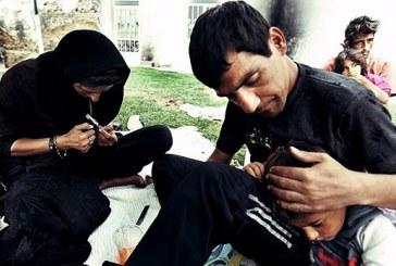 مرگ روزانه ۱۰ ایرانی بر اثر استعمال مواد مخدر