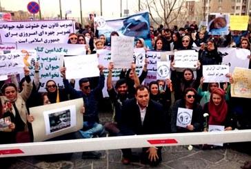 تجمع اعتراضی به آزار حیوانات در ایران