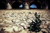 تجمع کشاورزان اصفهان در اعتراض به «باز نشدن آب زایندهرود»