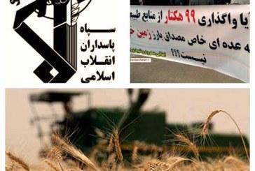 کشاورزان اهوازی: سپاه مزارع ما را مصادره کرده است
