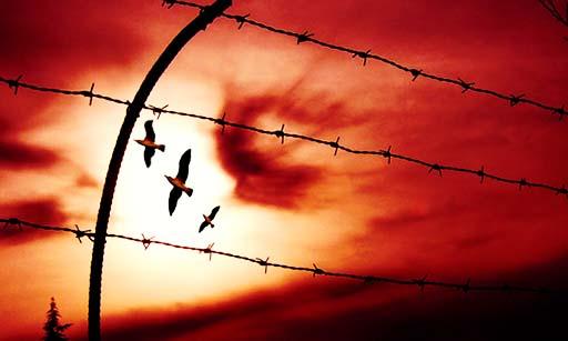 آزادی دو فعال مدنی در تهران و مریوان با قرار وثیقه