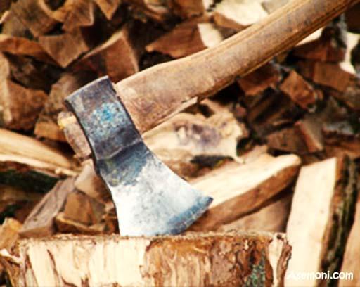 قطع شبانه درختهای خیابان لارستان