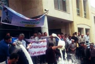 اقدام اعتراضی دامداران در مقابل جهاد کشاورزی اصفهان