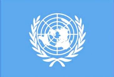 گزارش سازمان ملل: «جمهوری اسلامی فعالان حقوق بشر ایرانیتحتفشارقرار داده است»