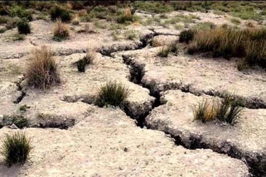 حفر بیش از ۶۰۰ چاه در یکی از دشتهای ممنوعه ایران