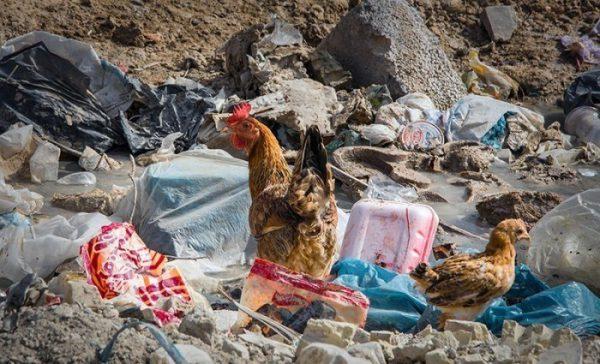 Goldasht-Ahwaz-Ahvaz-ethnic-Arab-poverty-discrimination-Iran-2016-May-Ali-Dashti0102-600x364