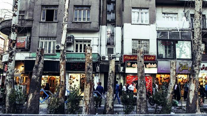 تصاویر چنارهای خشک شده در خیابان ولیعصر