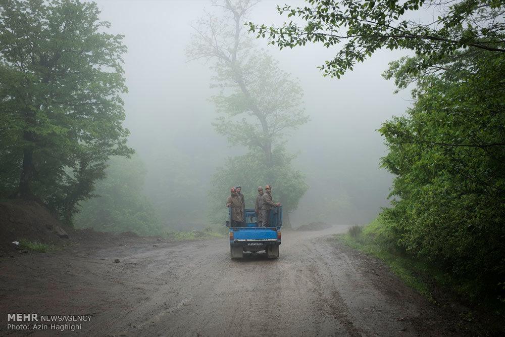 کارگران معادن زغال سنگ