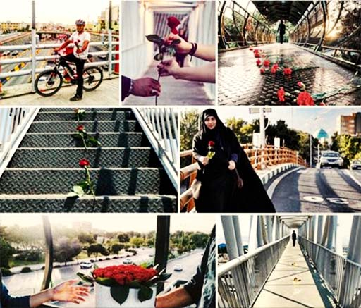 یک کمپین متفاوت علیه خودکشی؛ گلباران پل های تهران
