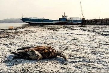 دومین دریاچه آب شور ایران خشک شد؛ خطر کویری شدن در یک قدمی فارس