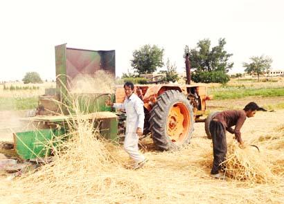 خسارت ۱۶۸ میلیارد ریالی به بخش کشاورزی گناباد