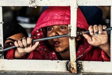 ورود سالانه سه هزار کودک به بازار کار