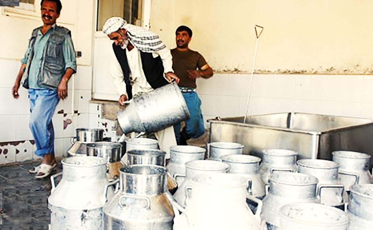 در پی تعطیلی واحد تولیدی شیر طبس، ۳۲ کارگر بیکار شدند