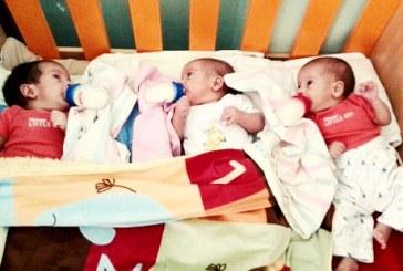حراج سه نوزاد در حوالی اراک