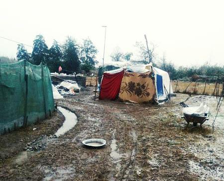زمینخوارها نخوانند؛ ماجرای خانوادهای که در این سرما در چادر زندگی میکنند!