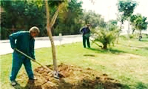 کارگران فضای سبز شهرداری بجنورد ۸ میلیارد تومان مطالبه دارند