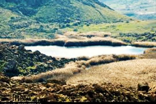 از یازده تالاب پلدختر دو مورد خشک شدهاند 
