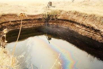 آلودگی نفتی در سرخون؛ یک میلیون ماهی تلف شدند