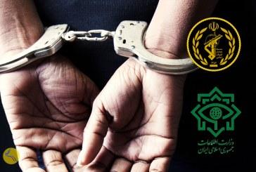 بازداشت شرمینه نادری، استاد دانشگاه تهران، از سوی نهادهای امنیتی