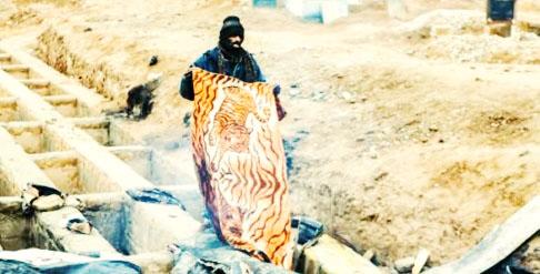 گورخواب های گورستان نصیرآباد مورد بازجویی قرار گرفتند