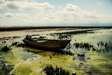 خلیج گرگان آلوده شده و در آستانه خشک شدن است
