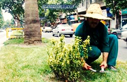معوقات کارگران فضای سبز بجنورد نه ماهه شد