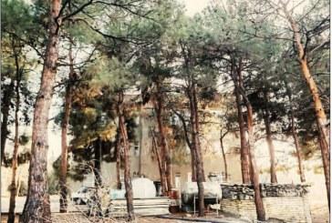 فراموش شدگان؛ ١٢ خانوادهای که ۴٠ سال است در پارک چیتگر رها شدهاند