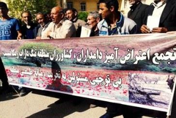 تجمع اعتراضی دامداران و کشاورزان کوهدشت؛ بی توجهی مسئولان به حفظ منابع طبیعی