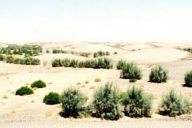 ۸۰ درصد سیستان و بلوچستان تحت تاثیر خشکسالی است