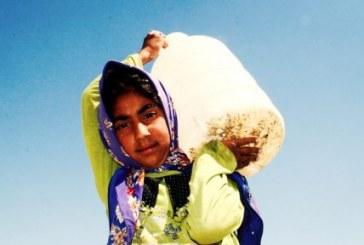 «ایران به ورشکستگی آبی رسیده است»