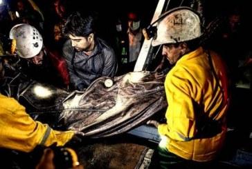 آخرین جسد از معدن آزادشهر خارج شد