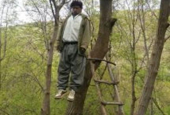 سنندج: خودکشی پیر مرد شصت ساله/تصویر