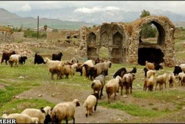 بلاد شاپور از آثار باستانی دوره ساسانی در معرض تخریب جدی