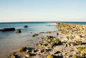 کمبود اقلام غذایی در جزیره خارگ