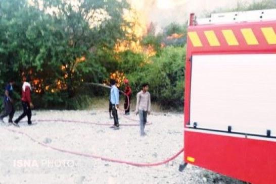 ۳۰۰ نخل منطقه گردشگری نیان هرمزگان در آتش سوخت