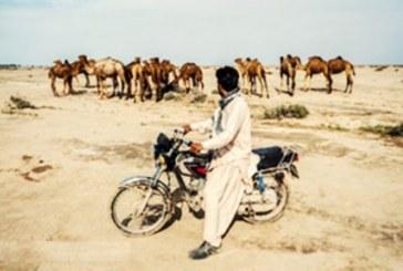 گزارش تصویری از خشکسالی و کمآبی در جنوب کرمان