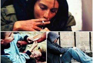 افزایش بیش از ۲ برابری معتادین در ایران
