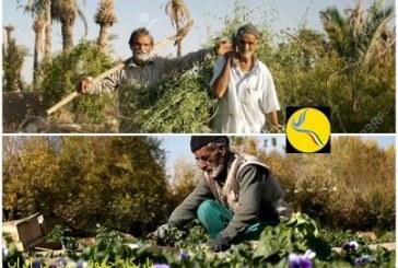 کشاورزان ایرانی نسلی در حال انقراض/ما زمانی در صنایع کشاورزی پیشگام منطقه بودیم