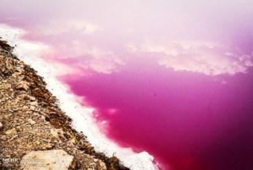 خشکی و تغییر رنگ دریاچه مهارلو استان فارس/ گزارش تصویری