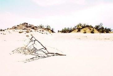 چهلهزار هکتار از اراضی کهگیلویهوبویراحمد در حال تبدیل به بیابان است