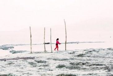 گزارشی از وضعیت تاسفبار ساحلنشینان دریاچه ارومیه